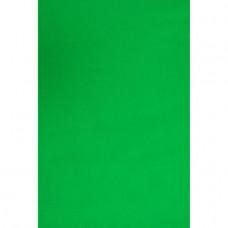 Фон студийный тканевый Visico PBM-3030 green Chroma Key Хромакей 3х3м